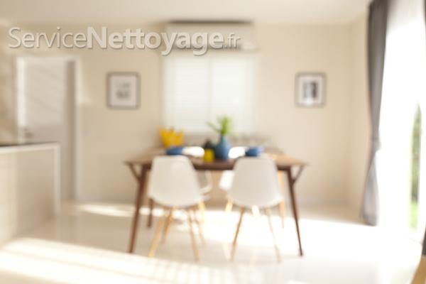 comment garder ma maison propre. Black Bedroom Furniture Sets. Home Design Ideas